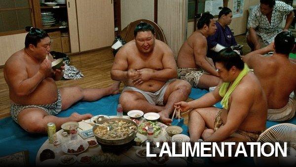 Alimentation des lutteurs de sumo