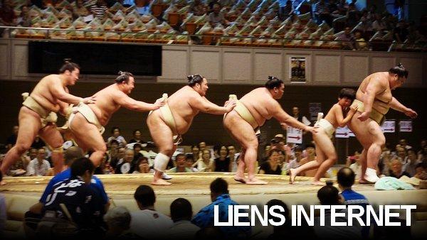 Liens sumo