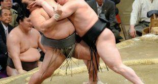 Harumafuji contre Toyonoshima