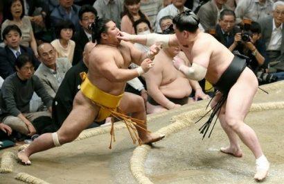 Shôhôzan contre Harumafuji