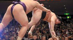 Harumafuji contre Tochiozan