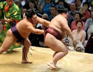 Chiyotairyu contre Kisenosato
