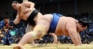 Aminishiki contre Kotoshogiku