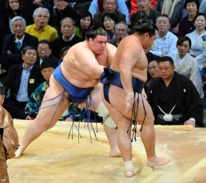 Aoiyama contre Kakuryu