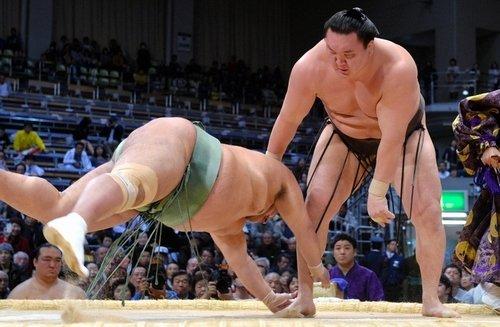 Hakuho contre Toyonoshima, Gôeidô sort du peloton de tête