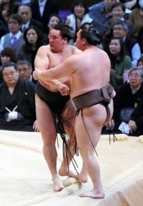 Harumafuji contre Hakuho