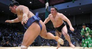 Harumafuji contre Homasho