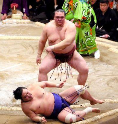 Kisenosato et Kakuryu se reprennent !