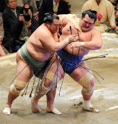 Les komusubi toujours sans victoire