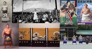 Exposition Mont Fuji et Sumo