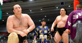 Harumafuji contre Kotooshu
