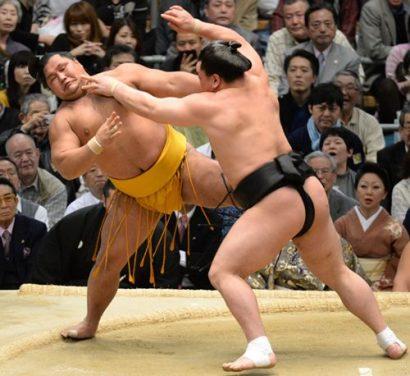 Harumafuji contre Shohozan