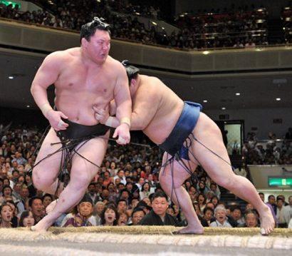 Hakuhô perd, égalité avec Kisenosato