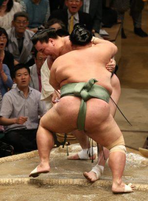 Harumafuji perd une seconde fois
