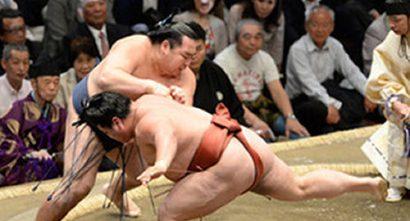Kakuryu contre Yoshikaze