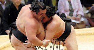 Harumafuji contre Toyohibiki