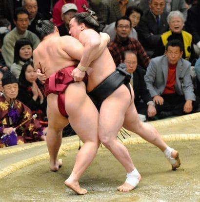 Harumafuji contre Endo