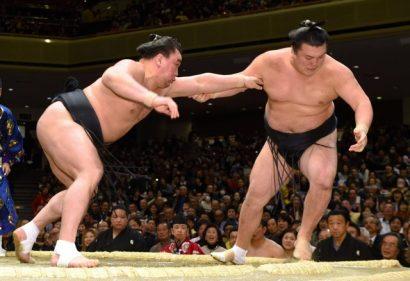 Harumafuji contre Ikioi