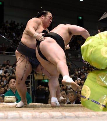 Toyonoshima contre Harumafuji