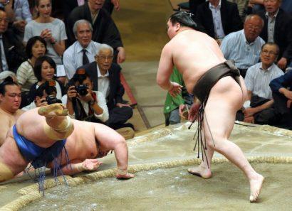 Hakuho domine seul le tournoi