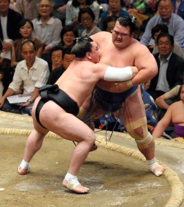 Harumafuji opéré du coude droit, ici face à Kotoshogiku en mai 2015.