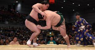 Sadanoumi contre Harumafuji