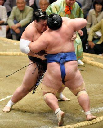 Terunofuji sort Kotoshogiku