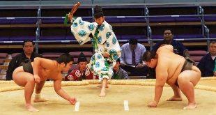 sumo sport olympique
