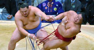 Tamawashi contre Daiheisho
