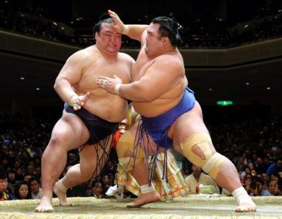 Hakuho et Kotoshogiku au coude à coude