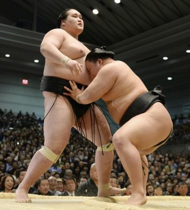 Goeido a battu sans mal Terunofuji