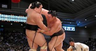 Terunofuji contre Hakuho une