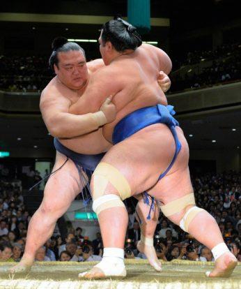 Hakuho et Kisenosato maintiennent l'égalité