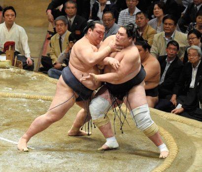 Hakuho et Kisenosato toujours invaincus se rencontreront demain.