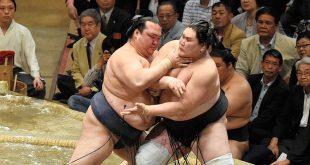 Kisenosato contre Terunofuji