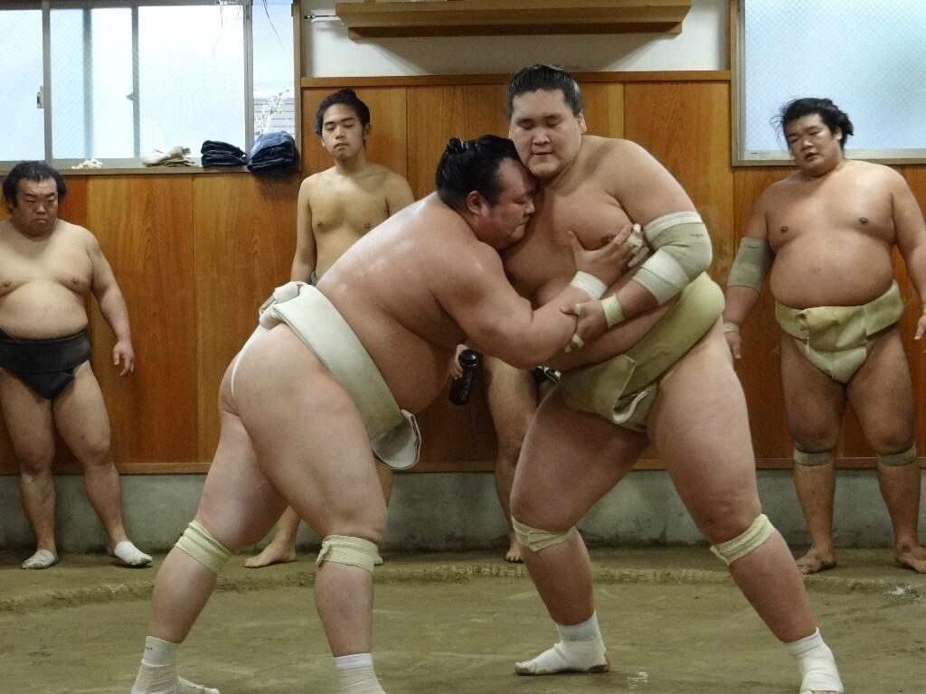 Un entrainement de sumo entre les rikishi Takarafuji et Terunofuji