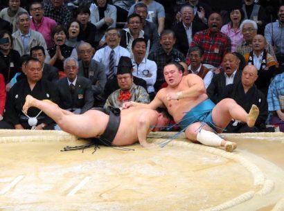 Goeido contre Tamawashi