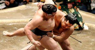 Shohozan contre Harumafuji