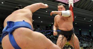Harumafuji contre Shodai