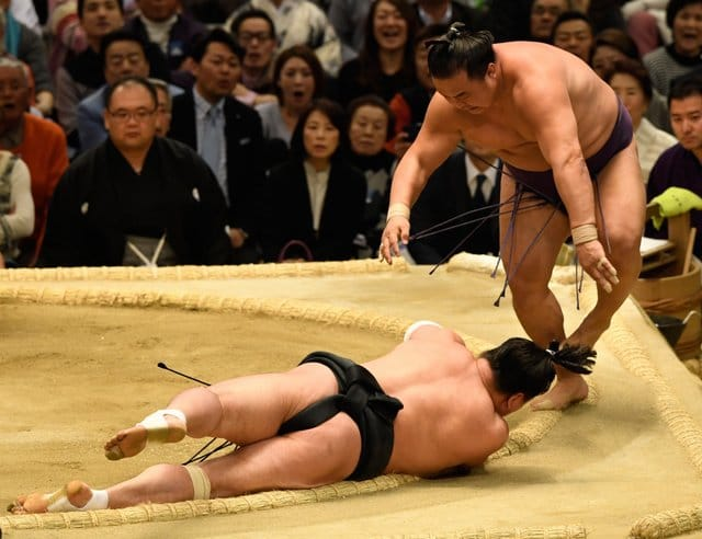 Harumafuji contre Sokokurai