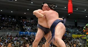 Kisenosato contre Ikioi