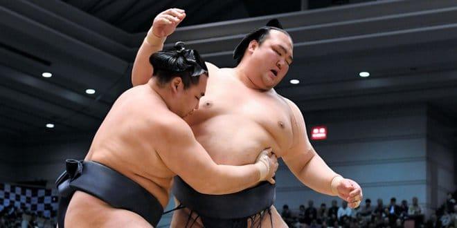 J14 – Terunofuji n'est plus qu'à une victoire du titre