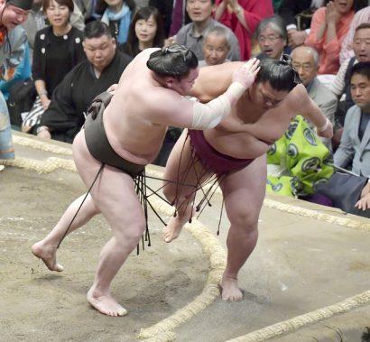 Hakuho, Harumafuji et Takayasu invaincus