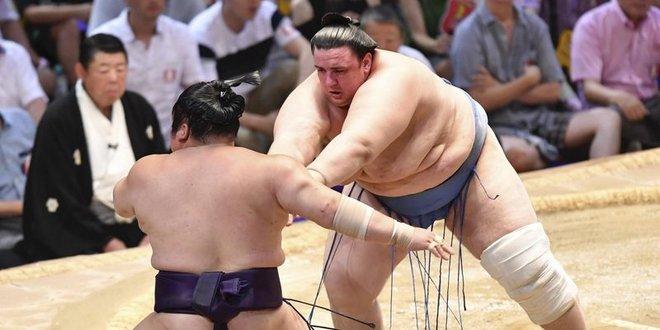 J14 – Aoiyama continue de tenir tête à Hakuho