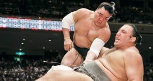 Harumafuji conre Tochinoshin