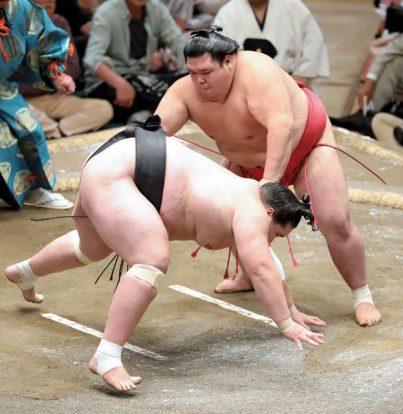 Onosho bat Harumafuji et reste le seul invaincu