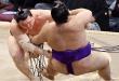 J3 – Kisenosato accroît son avance suite au retrait de Harumafuji
