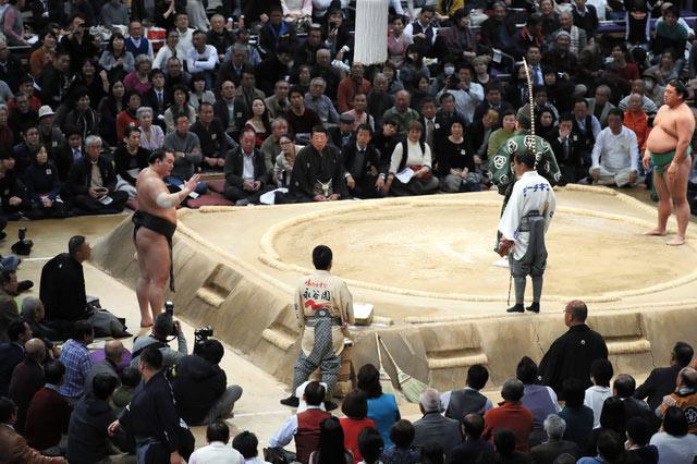 Hakuho appelle les juges