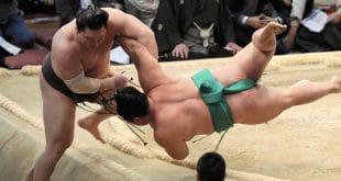 Hakuho contre Yoshikaze