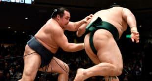 Kakuryu contre Okinoumi